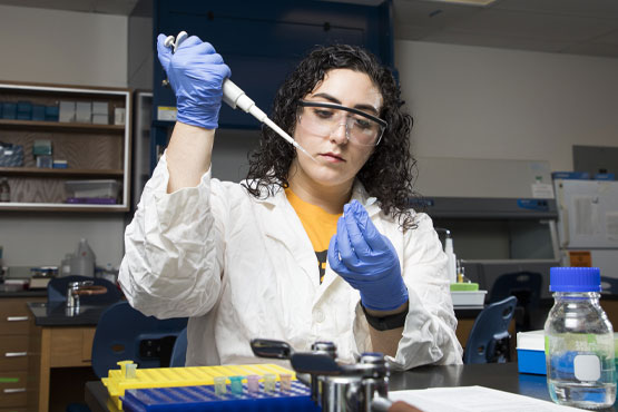 Student conducting research in a lab.