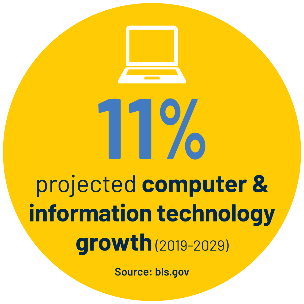 11% projected computer & information technology growth (2019-2029) stat. Source: bls.gov