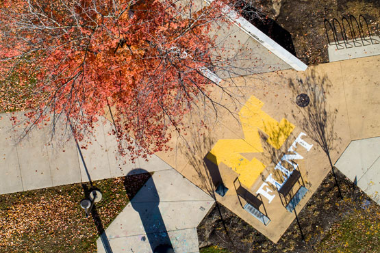 look down of sidewalk with UM-Flint logo