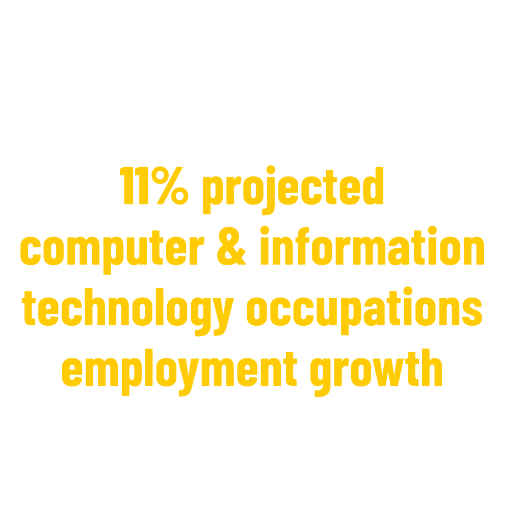 11% projected computer & information technology occupations employment growth (2019-2029) stat. Bureau of Labor Statistics