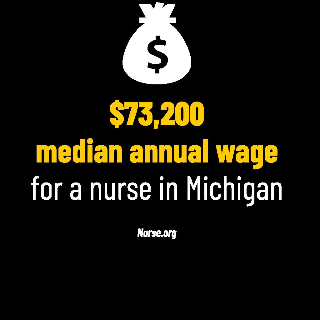 $73,200 median annual wage for a nurse in Michigan stat. Nurse.org